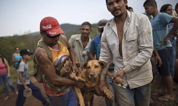 Спасатели потеряли надежду найти выживших после прорыва дамбы в Бразилии