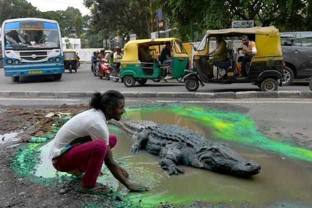 Гигантская анаконда сожрала человека на улице индийского города