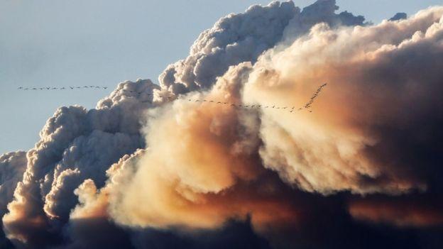 Власти эвакуировали нефтяников из-за пожара в районе Форта Мак-Мюррей