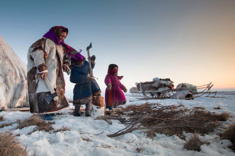 Как живут ненцы в Сибири: быт оленеводов