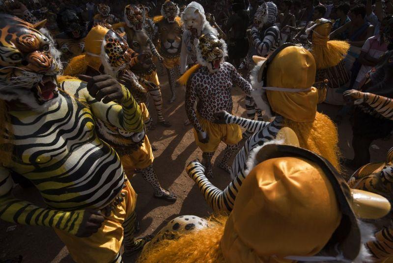 """Пуликали: фото с ежегодного парада """"тигров"""" в Индии"""