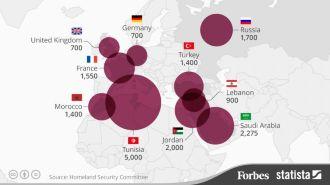 США назвали страны, из которых в Сирию и Ирак едут новобранцы
