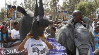 Африка в фотографиях: BBC показало события из жизни континента за прошедшую неделю
