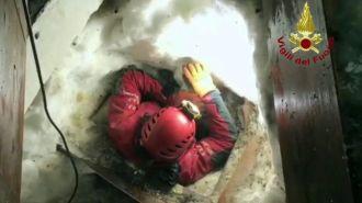 Спасатели достали из-под завалов отеля в Италии трех щенков