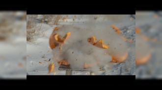 Петарда Мега Джамбо взрыв в тыкве