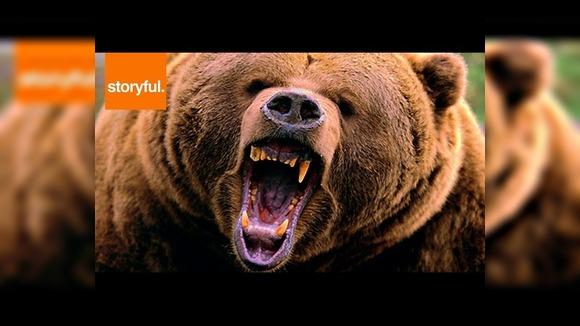 Криком отпугнул медведя